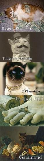 Des chats & des typos : Gothic, Times, Garamond, ...